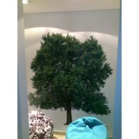 Panou 1 Magnolia Spa
