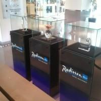 Postamente trofee Radisson (2)
